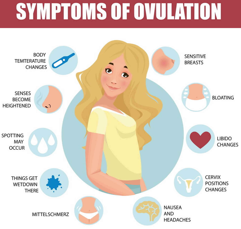 detect ovulation